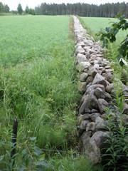 Kesällä 2011, kuinkahan pitkä kiviaita?