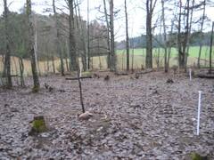 2013 syksy peitettynä
