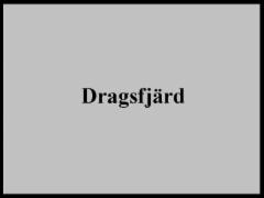 dragsfjard