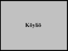 koylio