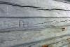 turkansaari 6 seinä