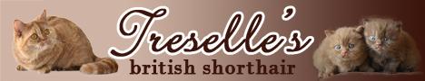 Treselle's