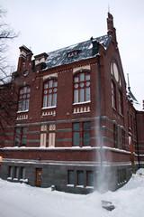 Vahjojen rakennusten arkkitehtuuri tuo kattotoihin lisähaastetta