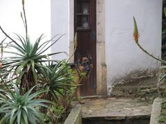 portugali 016