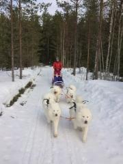 Ajelulla talvella 2018