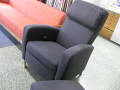 Liz tuoli