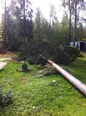Puunkaatoa Lahti