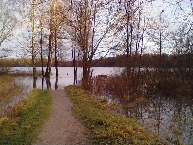 tulvat 11 003