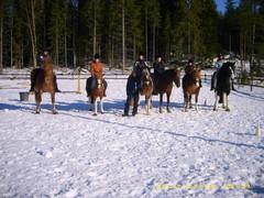 Taitoratsastuskilpailut 2012, Easy piisi -luokka