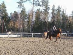 Syyslomaleiri 2018 Virkku ja Helmi