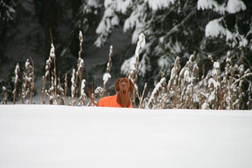 talvi 2011 020