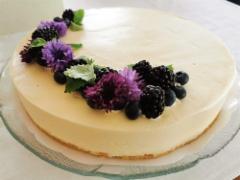 Vanilja-juustokakku