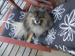 Terassin tuolilla :)