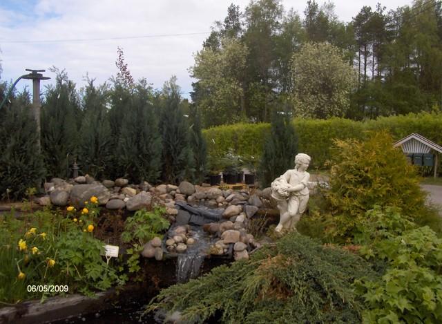 Siipon puutarha Kalajoella