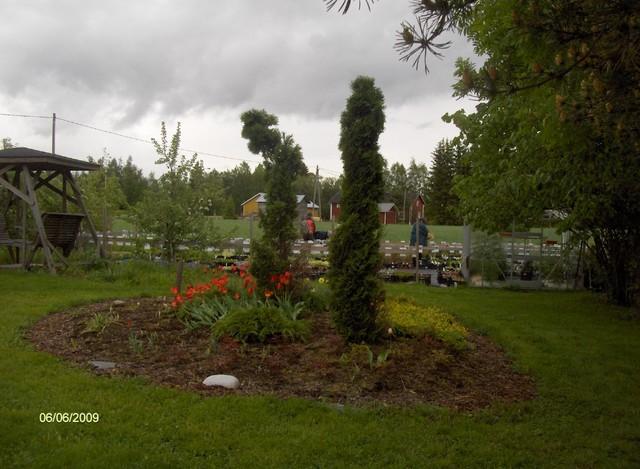 Piha ja puutarha Ylivieska