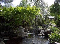 Wallius-Laitamäen yksityispiha Seinäjoki