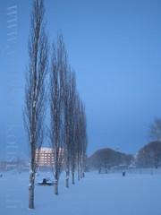 etela-suomen-oikeat-talvet1