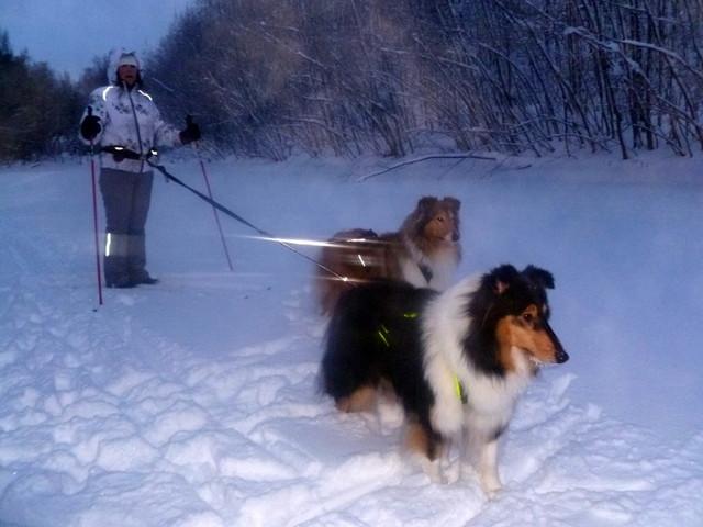 opetellaan vetämään hiihtäjää