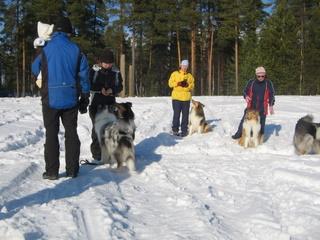 Scy p-suomen kevät lenkki 2009